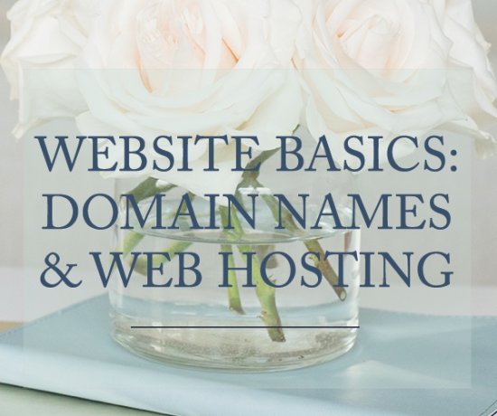 Website Basics - Domain Names & Web Hosting
